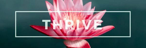 How to Thrive in Life? - Travel Everywhere. Earn Anywhere